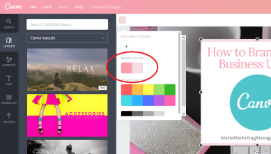 Canva brand colors